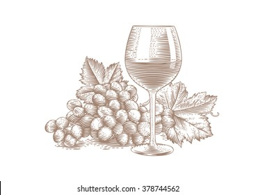 Drawing of glass of red wine with bunch of grape