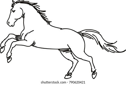 Drawing horse vector