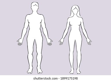 Drawing illustration of male and female body. Vector illustration
