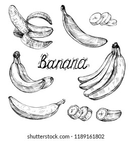 Drawing with the image of bananas in different versions. Vector illustration. Hand drawing. The style of engraving.