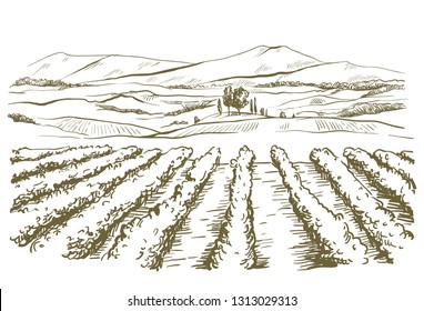 drawing of the landscape of the Italian province of Tuscany
