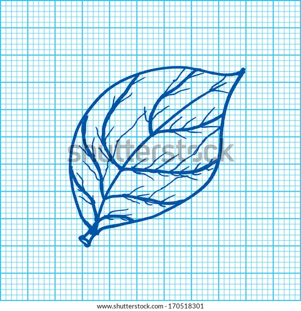drawing of leaves on graph paper vector