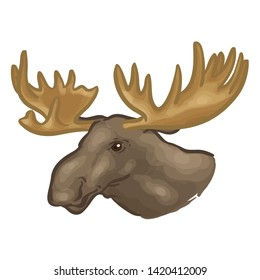 Drawing Of A Moose head. Animal Vector Illustration