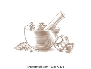 Drawing of mortar bowl with pestle, spice, herbs and garlic