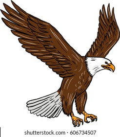 eagle flying drawing images stock photos vectors shutterstock