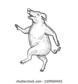 Drawing sketch style illustration of a happy and jolly pig, hog or boar dancing, walking or taking a stride viewed from side on isolated white background in black and white.