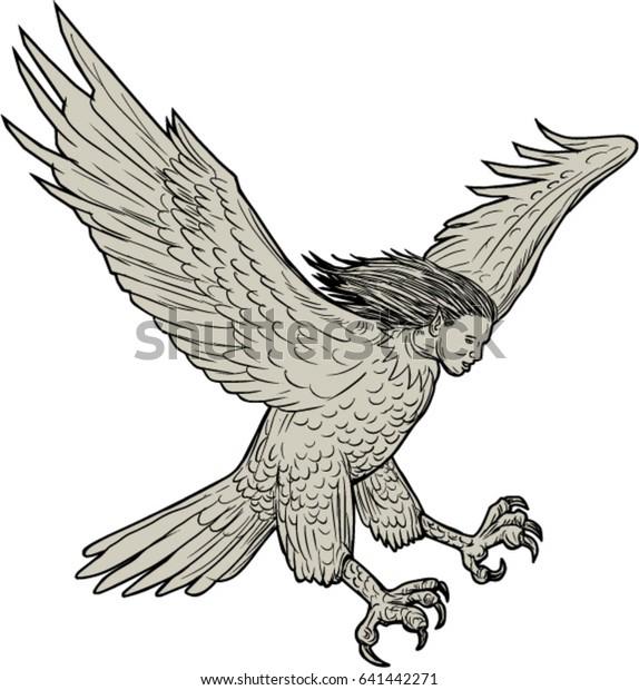Harpy Drawing