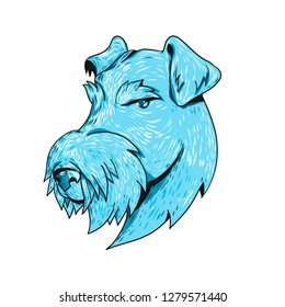 Drawing sketch style illustration head of a Airedale Terrier, Bingley Terrier or Waterside Terrier, the largest of all terriers also known as the ÒKing of TerriersÓ on isolated white background.
