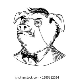 Drawing sketch style illustration of a noble aristocratic pig wearing a monocle and business suit with tie or tuxedo looking up on isolated white background in black and white.