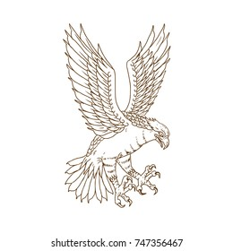 Drawing sketch style illustration of osprey, sea hawk, river hawk, or fish hawk  swooping down flying viewed from side on isolated background.