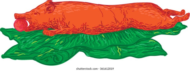 Drawing sketch style illustration of roast pig also known as lechon on banana leaves set on isolated white background.