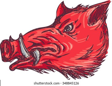 Drawing sketch style illustration of a wild pig boar razorback head viewed from the side set on isolated white background.