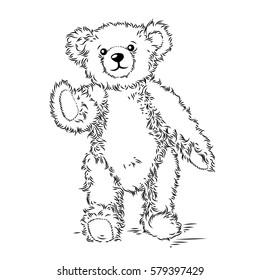 Drawing Teddy Bear. Vector illustration