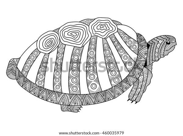 Drawing Turtle Coloring Page Coloring Book Stock Vector