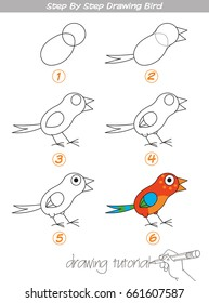 Drawing tutorial. Step by step drawing Bird. Easy to drawing Bird for Children. Funny cartoon character. Vector illustration
