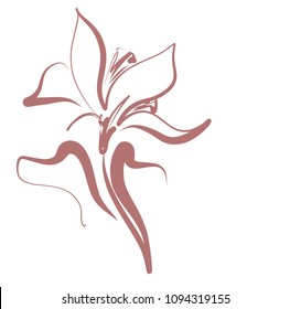 Drawing vector graphics with floral pattern for design. Floral flower natural design. Graphic, sketch drawing. lily, tulip. logotype