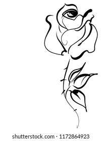 Drawing vector graphics with floral pattern for design. Floral  natural design. Graphic, sketch drawing.  Rose, logotype