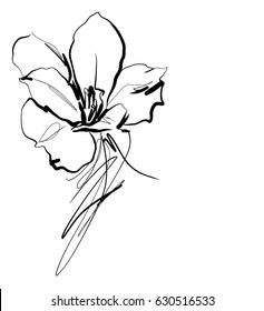 Drawing vector graphics with floral pattern for design. Floral flower natural design. Graphic, sketch drawing.  freesia
