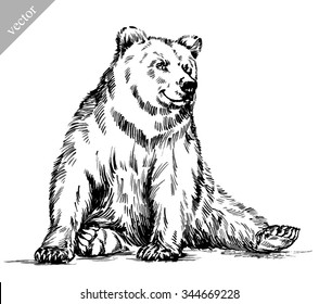 Drawn in ink isolated bear illustration sketch. linear art