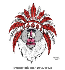 Drawn monkey. Mandrill in a Native American Indian chief. Red and black roach. Indian feather headdress of eagle. Vector illustration of Ape