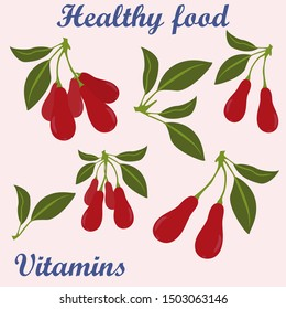 drawn vector graphics goji berry collection