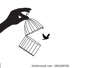 Dream Bird Flying Away,bird flying out of cage,bird released from cage,freedom concept.