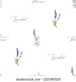 Dream of Provence seamless pattern with lavender. Vector watercolor vintage sketch. Botanical colorful illustration on white background.