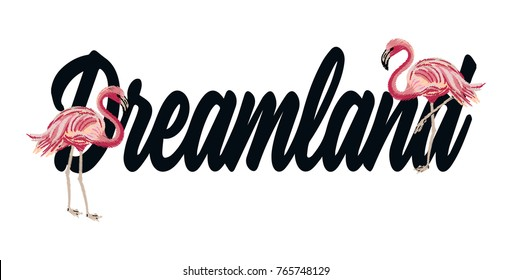 dream slogan and flamingo embroidery graphic