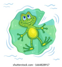 A dreamy frog swims on a large green leaf and looks up at the sky. In cartoon style. Isolated on white background. Vector illustration.