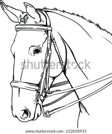 Dressage Horse Stock Vector Royalty Free 222028933