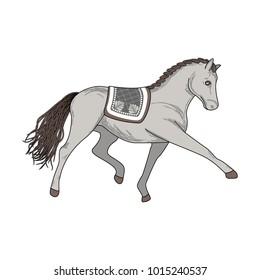 Dressage horse vector illustration. Animal artist performance.