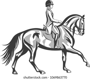 A dressage rider on a horse execute the canter.