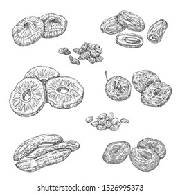 Dried fruits and candied berries isolated sketches. Vector monochrome pineapple and banana, damson fruit and figs. Raisins and prunes, apricots, date, nuts and cherry snacks, natural healthy food
