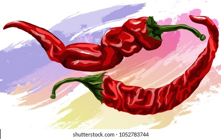 Dried red hot chili peppers. Hand-drawn