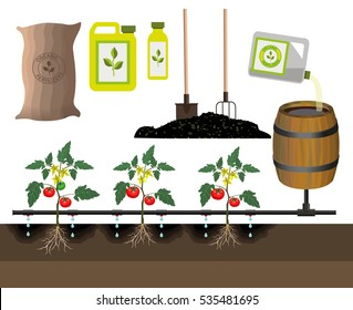 Drip irrigation system, vector illustration