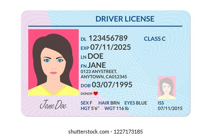 Driver license with female photo. Identification or ID card, document template. Vector illustration.