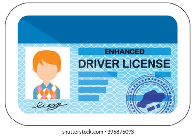Driver license. Vector. Cartoon style document.