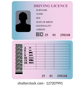Driving license. Vector illustration.