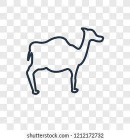 Dromedary concept vector linear icon isolated on transparent background, Dromedary concept transparency concept in outline style