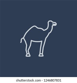 Dromedary icon. Trendy flat vector Dromedary icon on dark blue background from Desert  collection