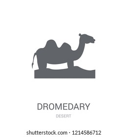Dromedary icon. Trendy Dromedary logo concept on white background from Desert collection. Suitable for use on web apps, mobile apps and print media.