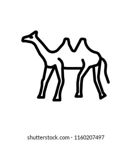 Dromedary icon vector isolated on white background, Dromedary transparent sign