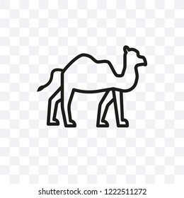 Dromedary vector linear icon isolated on transparent background, Dromedary transparency concept can be used for web and mobile