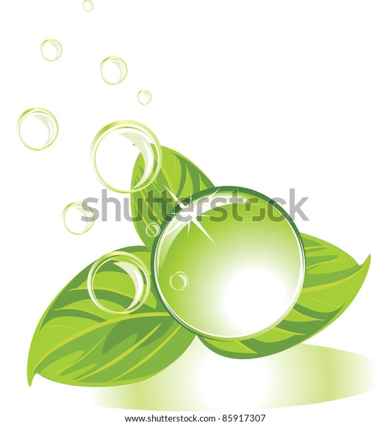 drop-leaves-bubbles-vector-600w-85917307