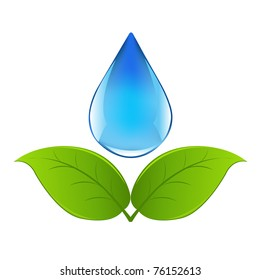 Drop Of Water With Sprout, Isolated On White Background, Vector Illustration