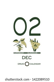 Druid calendar of flowers and trees. Leaf calendar template. Day after day. December 2 is a hornbeam tree and a gladiolus flower. Astrological celtic horoscope. Eco design