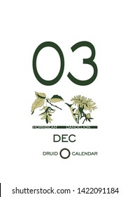 Druid calendar of flowers and trees. Leaf calendar template. Day after day. December 3 is a hornbeam tree and a dandelion flower. Astrological celtic horoscope. Eco design