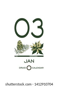 Druidic plant calendar. The day of January 3 corresponds to fir tree and gentian flower. Celtic astrological horoscope. Eco design for natural decor. Calendar template