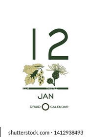 Druidic plant calendar. Day January 12 corresponds to the tree elm and flower thistle. Celtic astrological horoscope. Eco design for natural decor. Tear-off calendar template