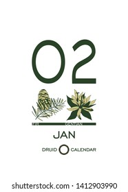 Druidic plant calendar. January 2 day corresponds to fir tree and gentian flower. Celtic astrological horoscope. Eco design for natural decor